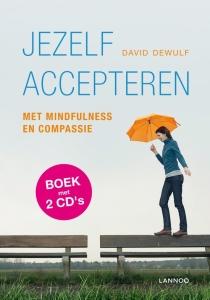 boek-david